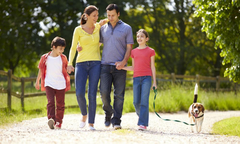 Cuida a tu familia, conttrata un seguro con QRK